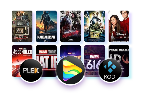 Best Streaming Downloader for batch download & release auto-download