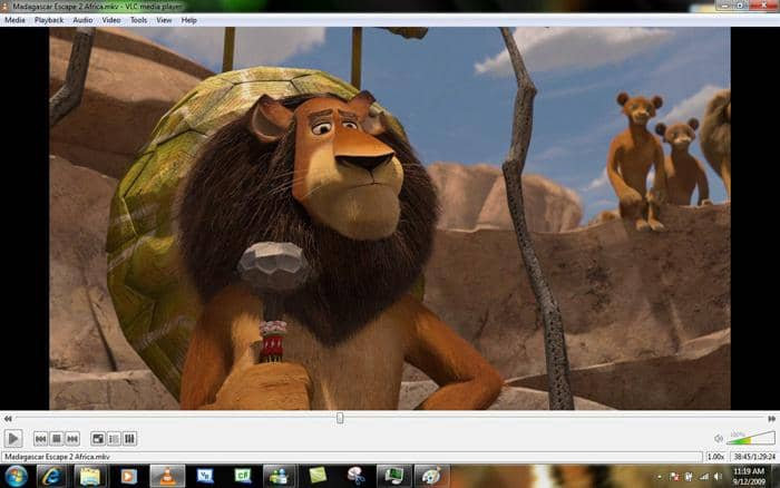 VLC media player which can play any ripped or converted files