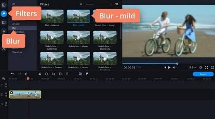 How to Blur Background in Video