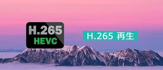 h265 再生
