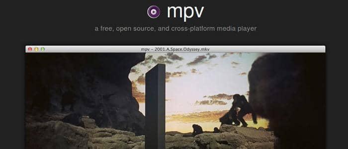 wmv video player
